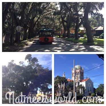 Top: front of the trolley, Bottom Left: the oldest tree in America, Bottom right: The beautiful church built by Henry Flagler.
