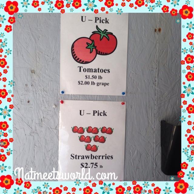 knausberryfarmtomatoprices