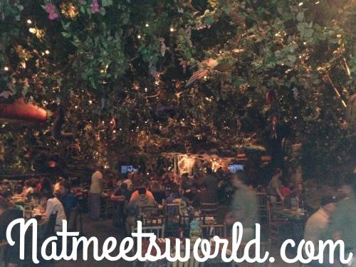rainforest cafe dining area