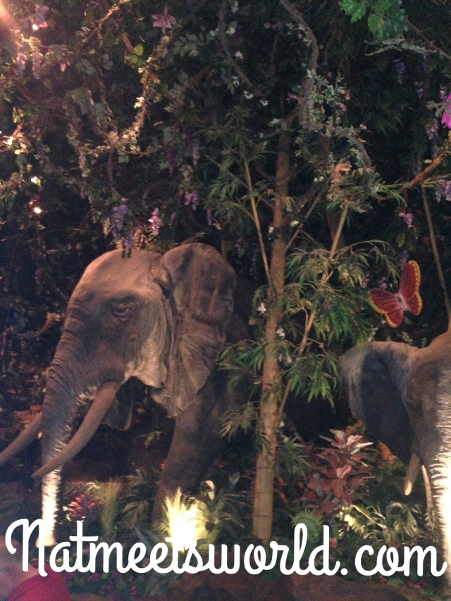 rainforest cafe ele